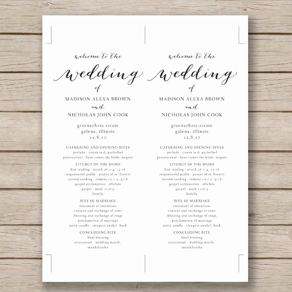 Free Program Templates for Word Inspirational 67 Wedding Program Template Free Word Pdf Psd