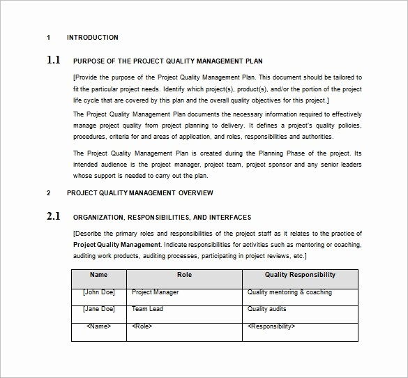 Free Project Plan Template Word Lovely 16 Project Management Plan Templates Free Sample