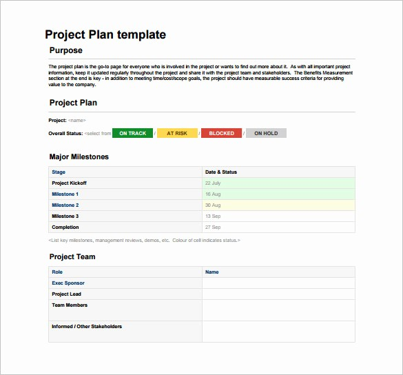 Free Project Plan Template Word Lovely 23 Project Plan Template Doc Excel Pdf