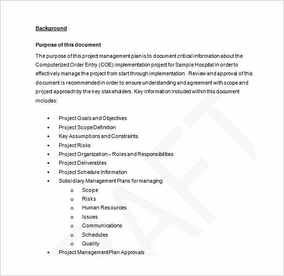 Free Project Plan Template Word Luxury 16 Project Management Plan Templates Free Sample