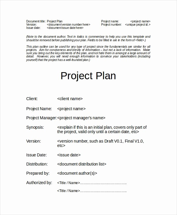Free Project Plan Template Word New Project Plan Template 12 Free Word Psd Pdf Documents