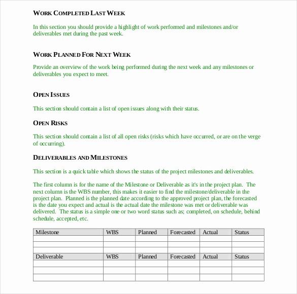 Free Project Status Report Template Awesome 19 Status Report Templates Free Sample Example