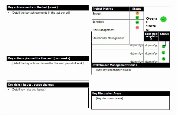 Free Project Status Report Template Luxury Status Report Templates 12 Free Word Documents Download