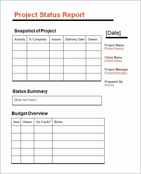 Free Project Status Report Template Unique 11 Sample Status Reports
