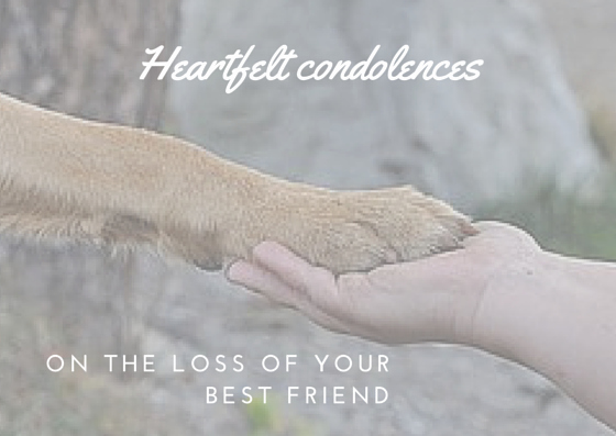 Free Sympathy Cards to Print Inspirational Free Printable Sympathy Cards for Pets Vsmetalsgroup