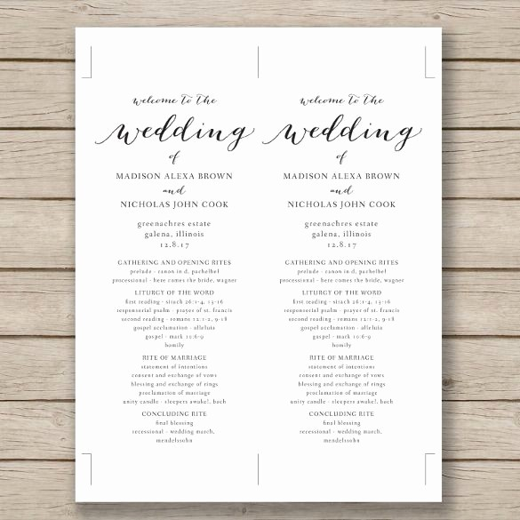 Free Wedding Program Template Downloads Beautiful Wedding Program Template – 41 Free Word Pdf Psd