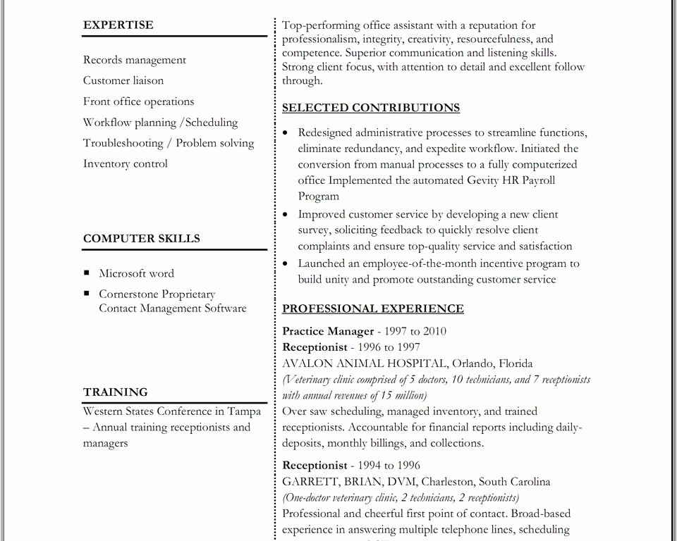 Functional Resume Templates Free Download Lovely Free Executive Resume Templates Functional Template