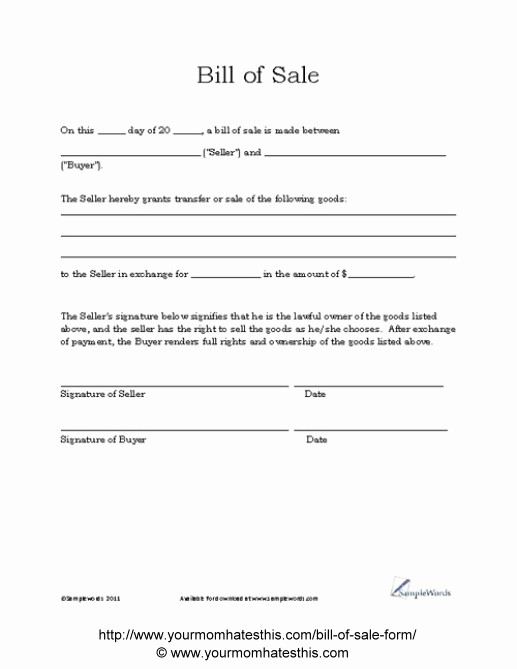 Generic Bill Of Sale Pdf Inspirational Download Bill Sale form Pdf