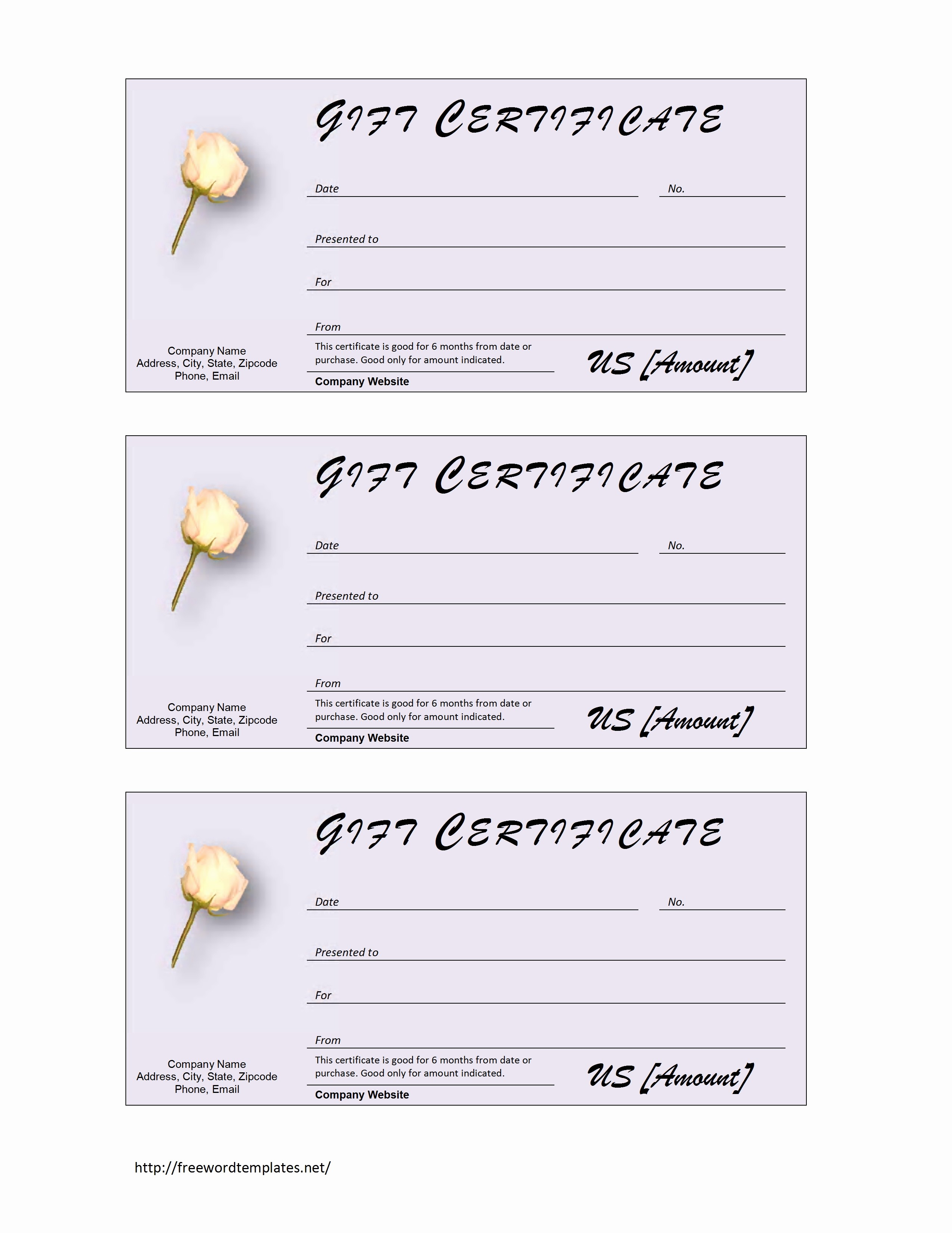 Gift Certificate Template Microsoft Word Inspirational Donation Gift Certificate Template