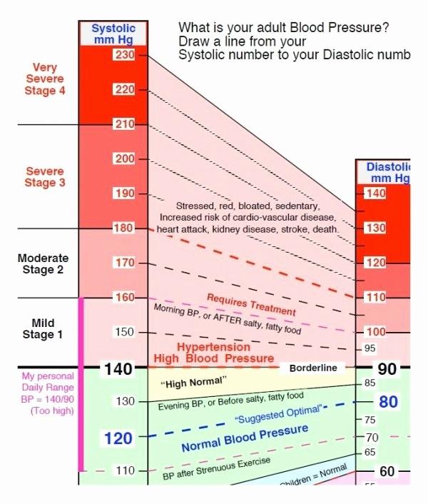 Google Docs Blood Pressure Template Best Of Blood Pressure Monitor Chart