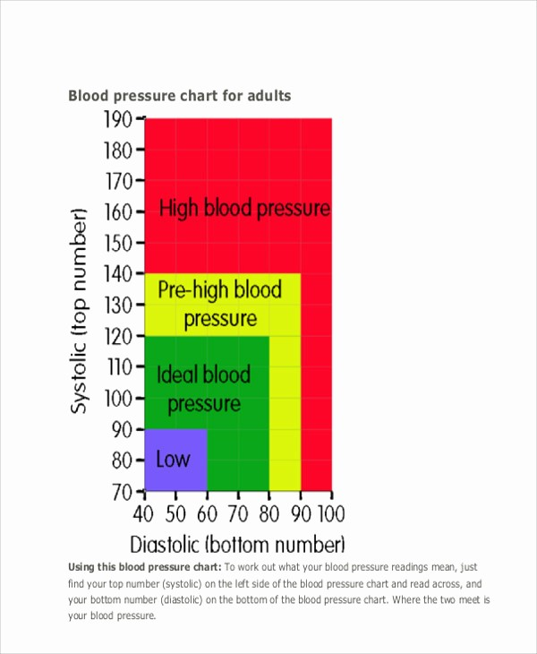Google Docs Blood Pressure Template Fresh 9 Blood Chart Templates Free Sample Example format