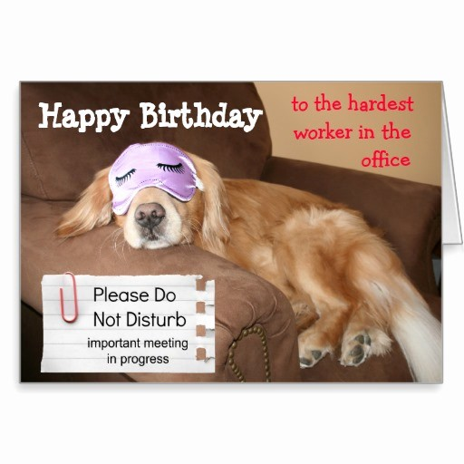 Happy Birthday From the Office Elegant Funny Fice Birthday Quotes Quotesgram