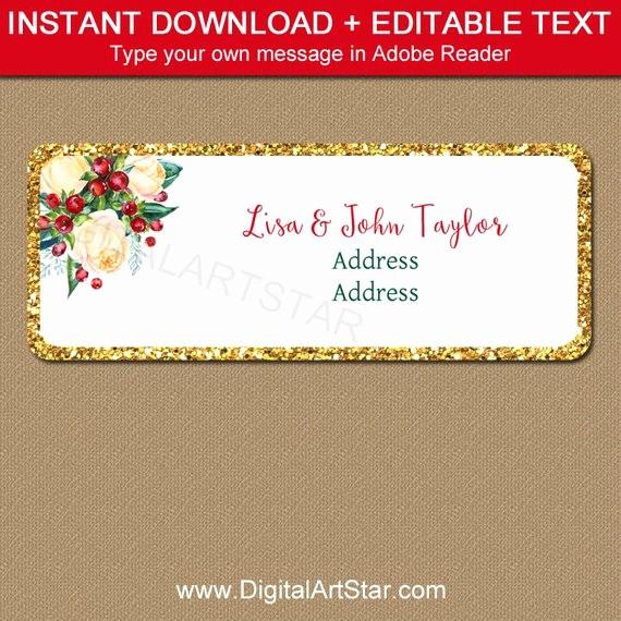 Holiday Return Address Label Templates Inspirational Christmas Address Label Template Editable Christmas