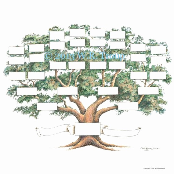 How to Family Tree Chart Beautiful Family Tree Scrapbook Chart 12x12 Inch 5 6 Generations