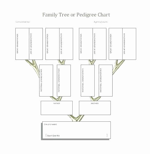 How to Family Tree Chart Elegant 4 Generation Pedigree Chart Printable Family Tree Template