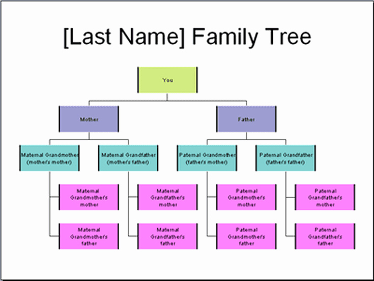 How to Family Tree Chart Elegant 5 Ways to Create and Display Your Family Tree