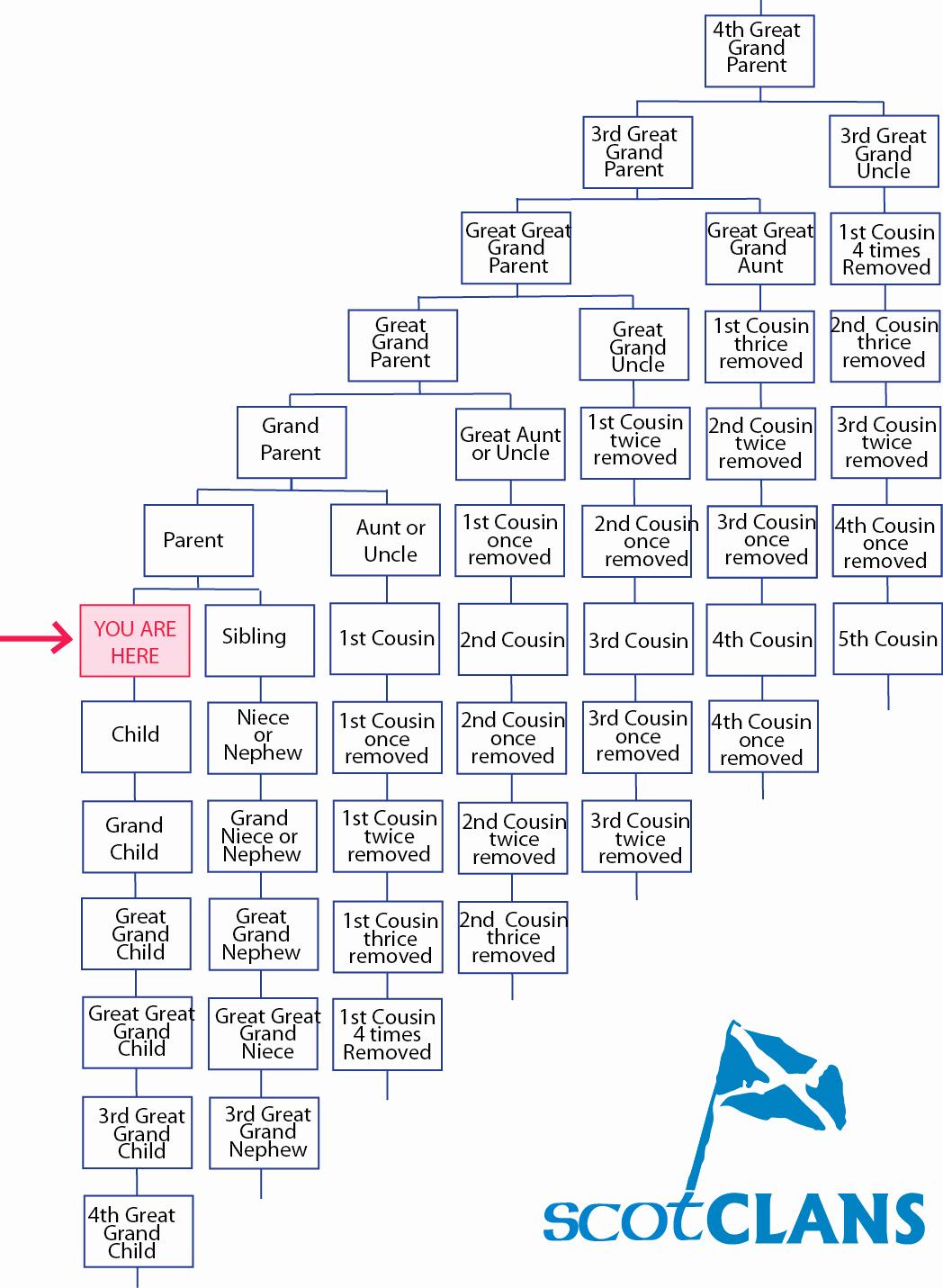 How to Family Tree Chart Elegant Family Tree Chart