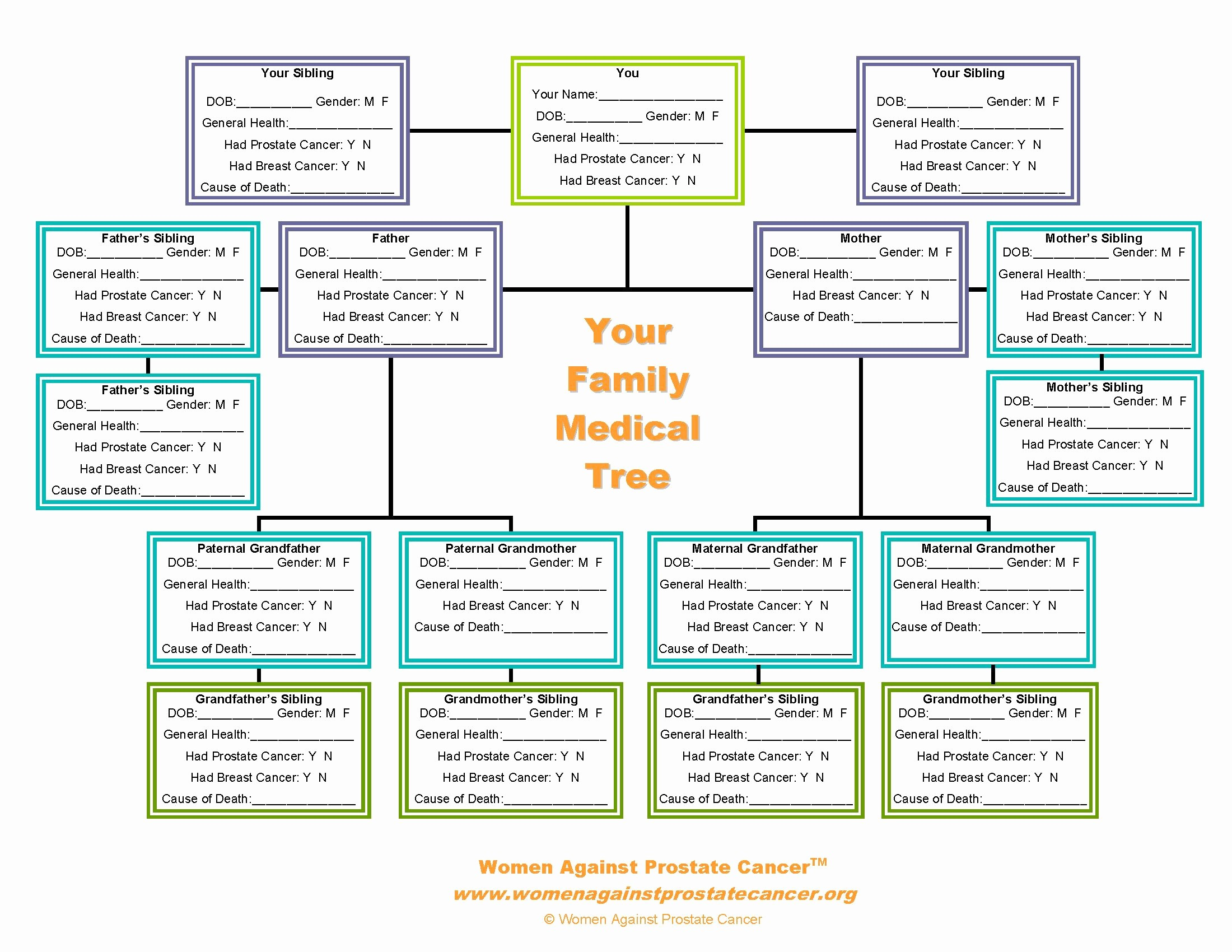 How to Family Tree Chart Elegant Family Tree forms Pedigree Chart