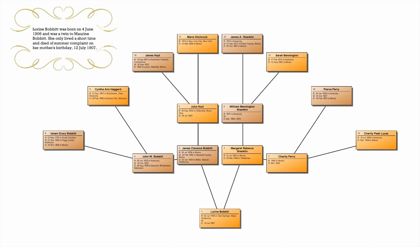 How to Family Tree Chart Inspirational Family Tree Chart Maker