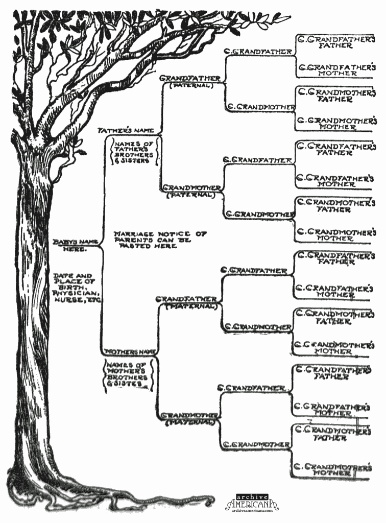 How to Family Tree Chart Luxury Start A Genealogical Record for Your Family 1905