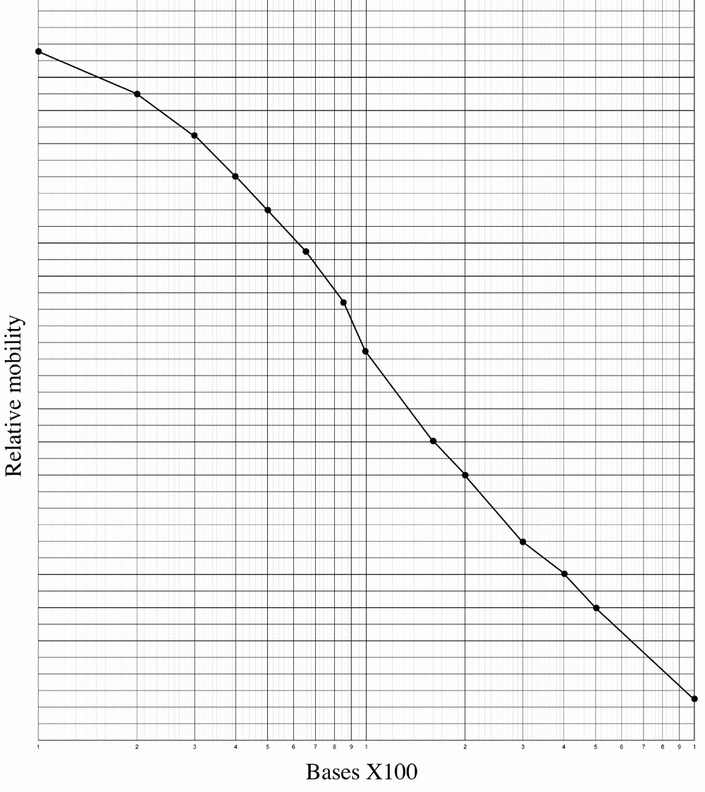 How to Use Graph Paper Awesome Worksheet Standard Graph Paper Grass Fedjp Worksheet