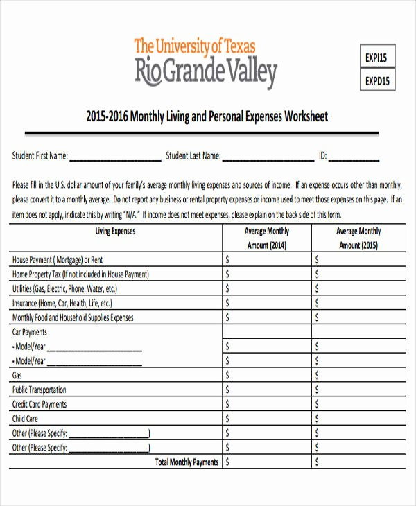 Income and Expense Report Template Beautiful 29 Expense Report Template In Pdf