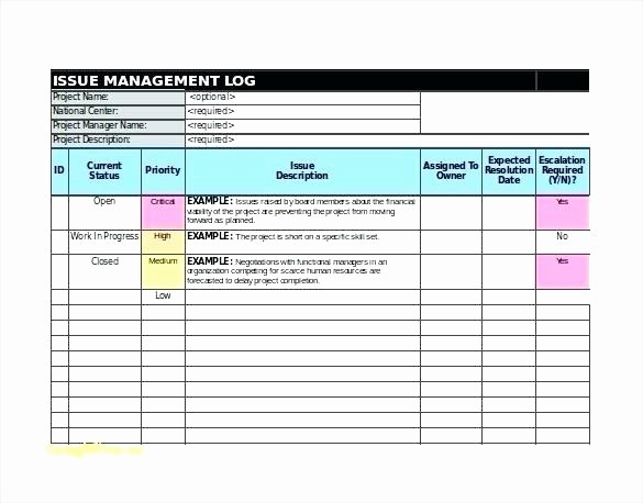 Issues List Template Excel Free Fresh Raid Documentation Project Management Template Log