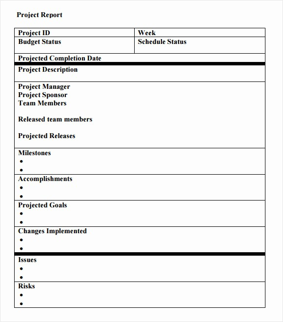 It Project Status Report Template Best Of 14 Sample Project Status Reports – Pdf Word Pages