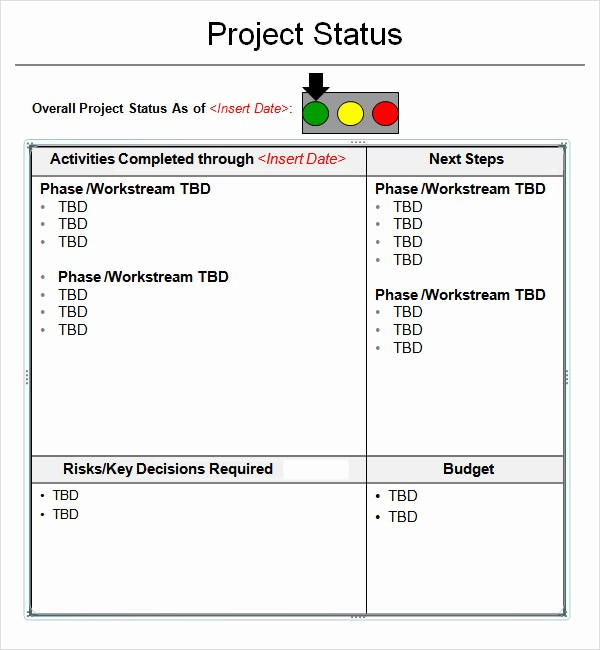 It Project Status Report Template Best Of 14 Sample Useful Project Status Report Templates
