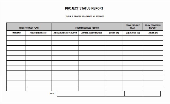 It Project Status Report Template Fresh 19 Status Report Templates Free Sample Example