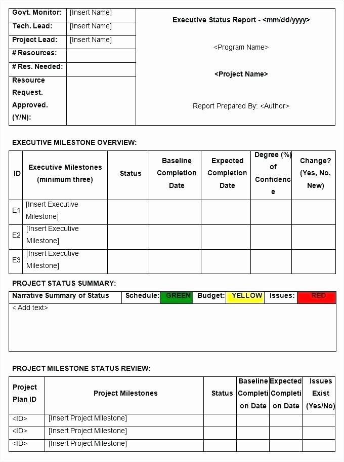 It Project Status Report Template New Status Report Template Excel Free Download Project Status