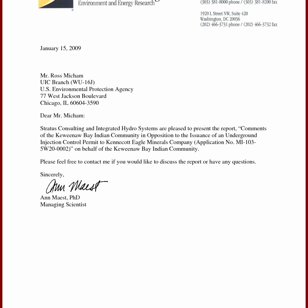 Letter Template for Microsoft Word Fresh Dandy Professional Business Letter Template – Letter