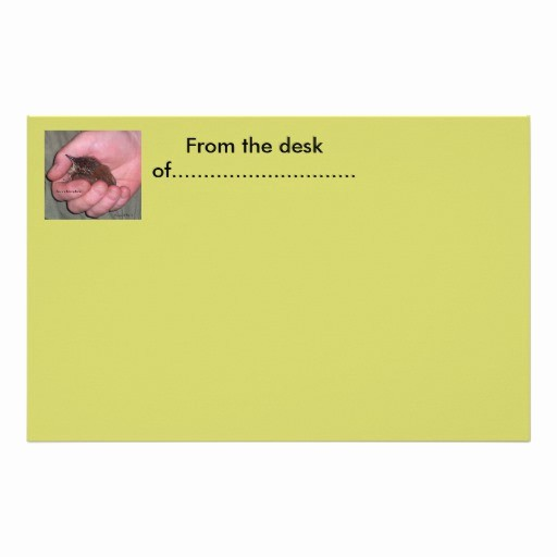 Letterhead From the Desk Of Beautiful From the Desk Of Stationery