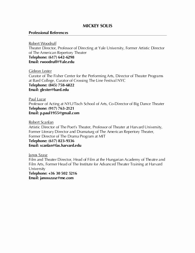 List Of Personal References Template Elegant Professional References List