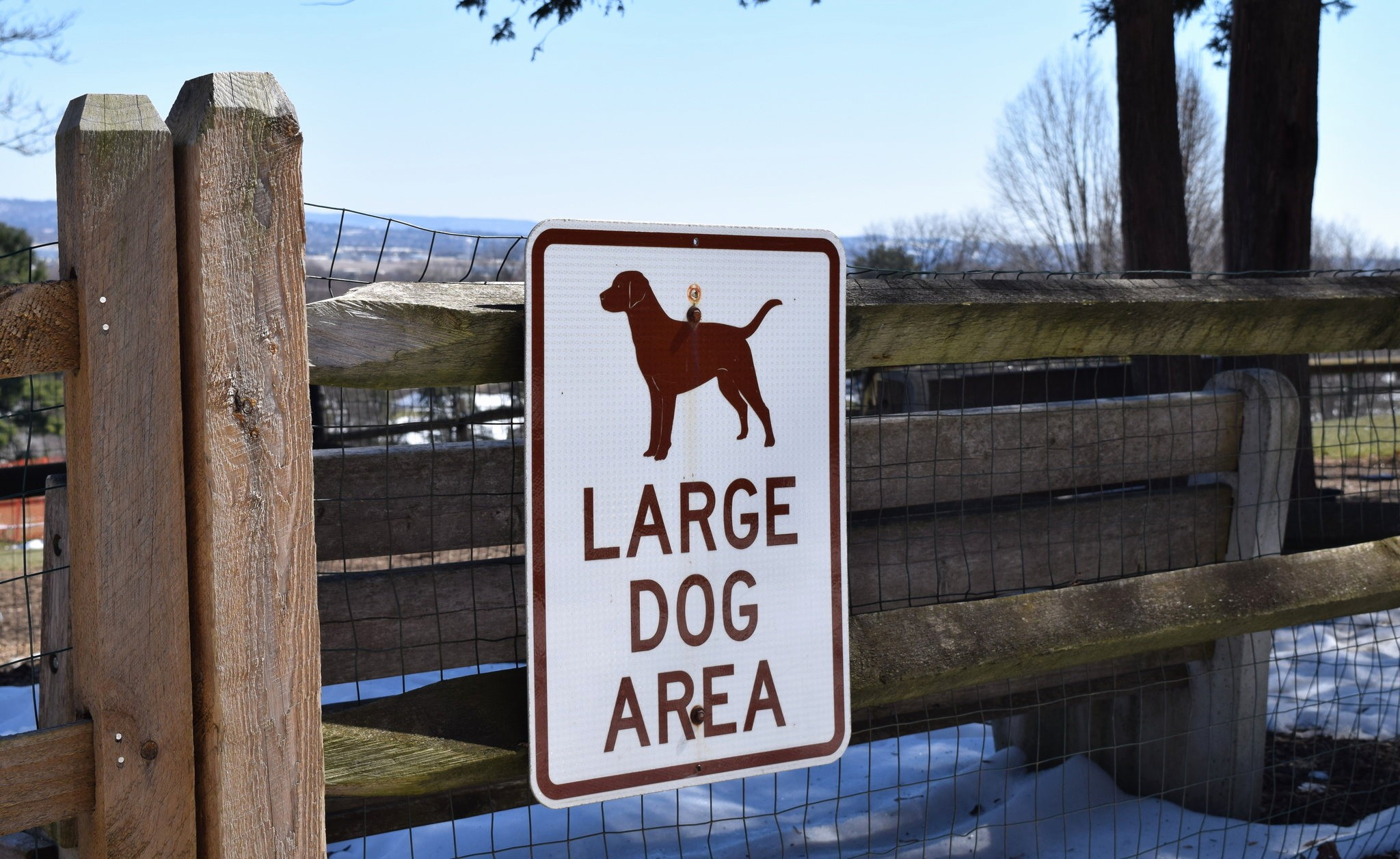Live Com Login Sign In New Slate Belt Group Pushes for A Different Type Of Dog Park