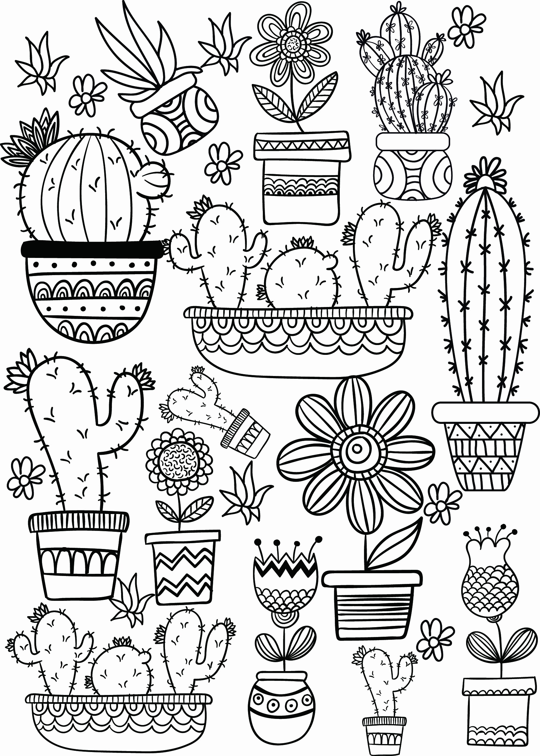 Live Com Sign In Page Elegant Professional Cactus Coloring Sheet Page Preschool In