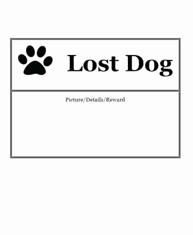 Lost and Found Sign Template Awesome Missing Poster Template Necessary Templates 3 Knowing