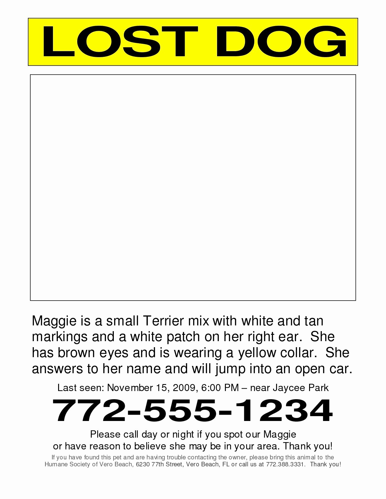 Lost and Found Sign Template Elegant Found Dog Poster Template Portablegasgrillweber