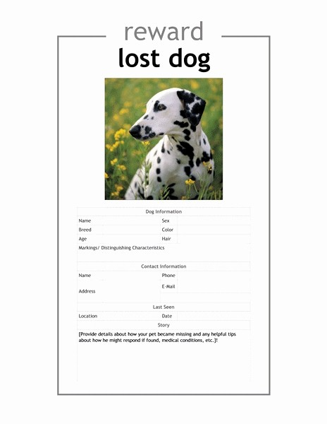 Lost and Found Sign Template Fresh 11 Luxury Lost Dog Sign Template Davidklinghoffer