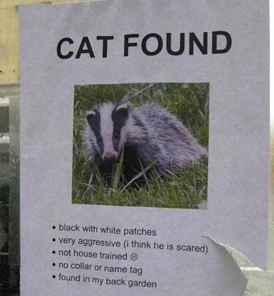 Lost and Found Sign Template Inspirational All these Funny Lost and Found Flyers are Worth