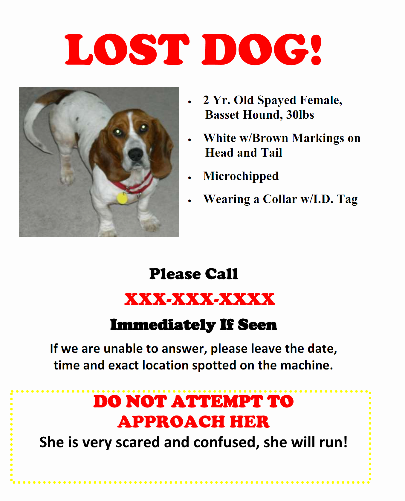 Lost and Found Sign Template Lovely Lost Dog Flyer Template Gallery Template Design Ideas