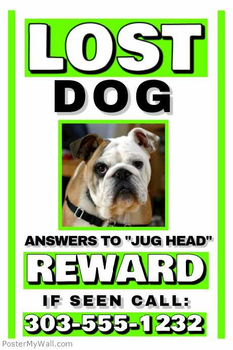 Lost and Found Sign Template Lovely Lost Dog Template