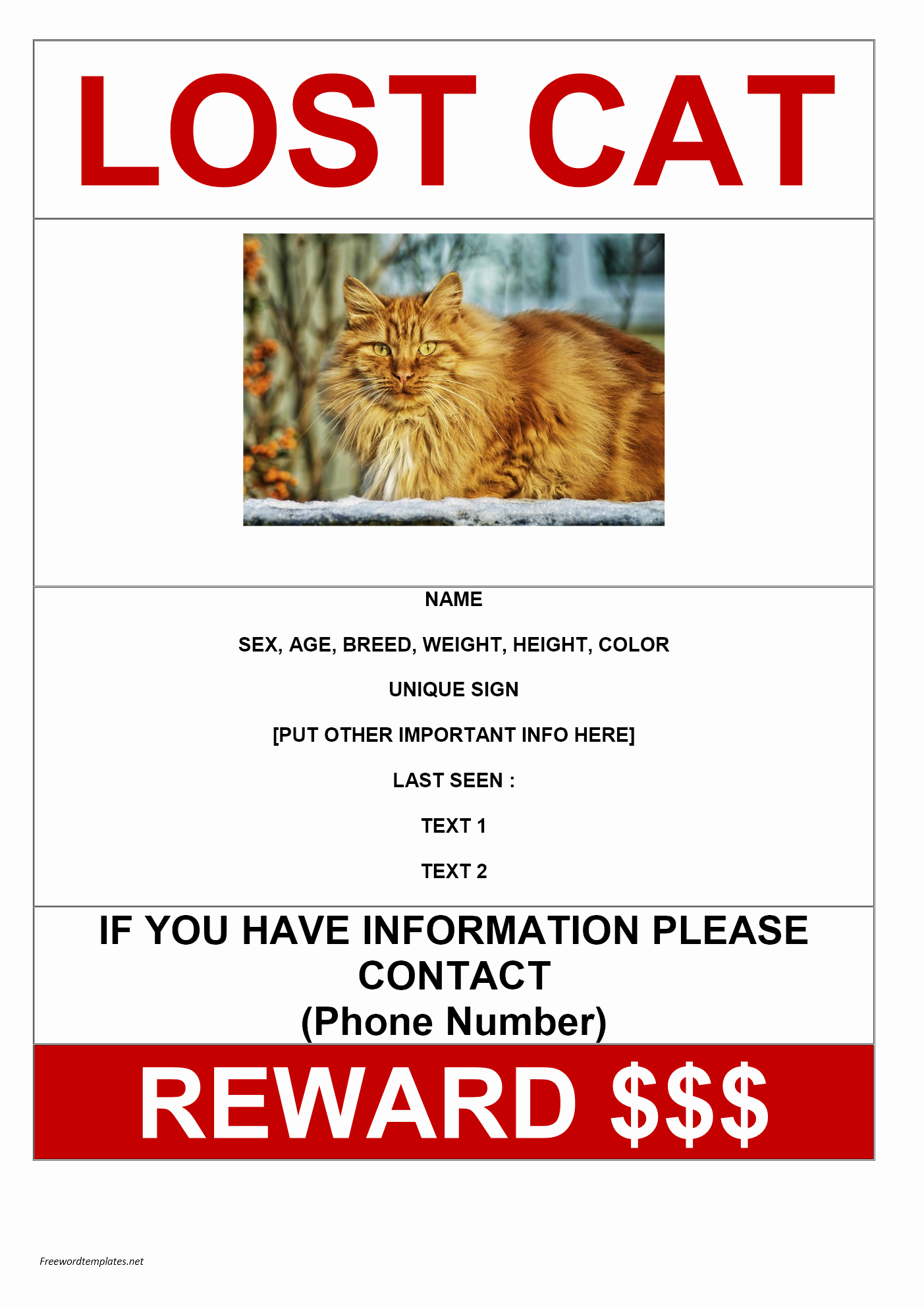 Lost and Found Sign Template Unique Lost Cat Poster Template Gallery