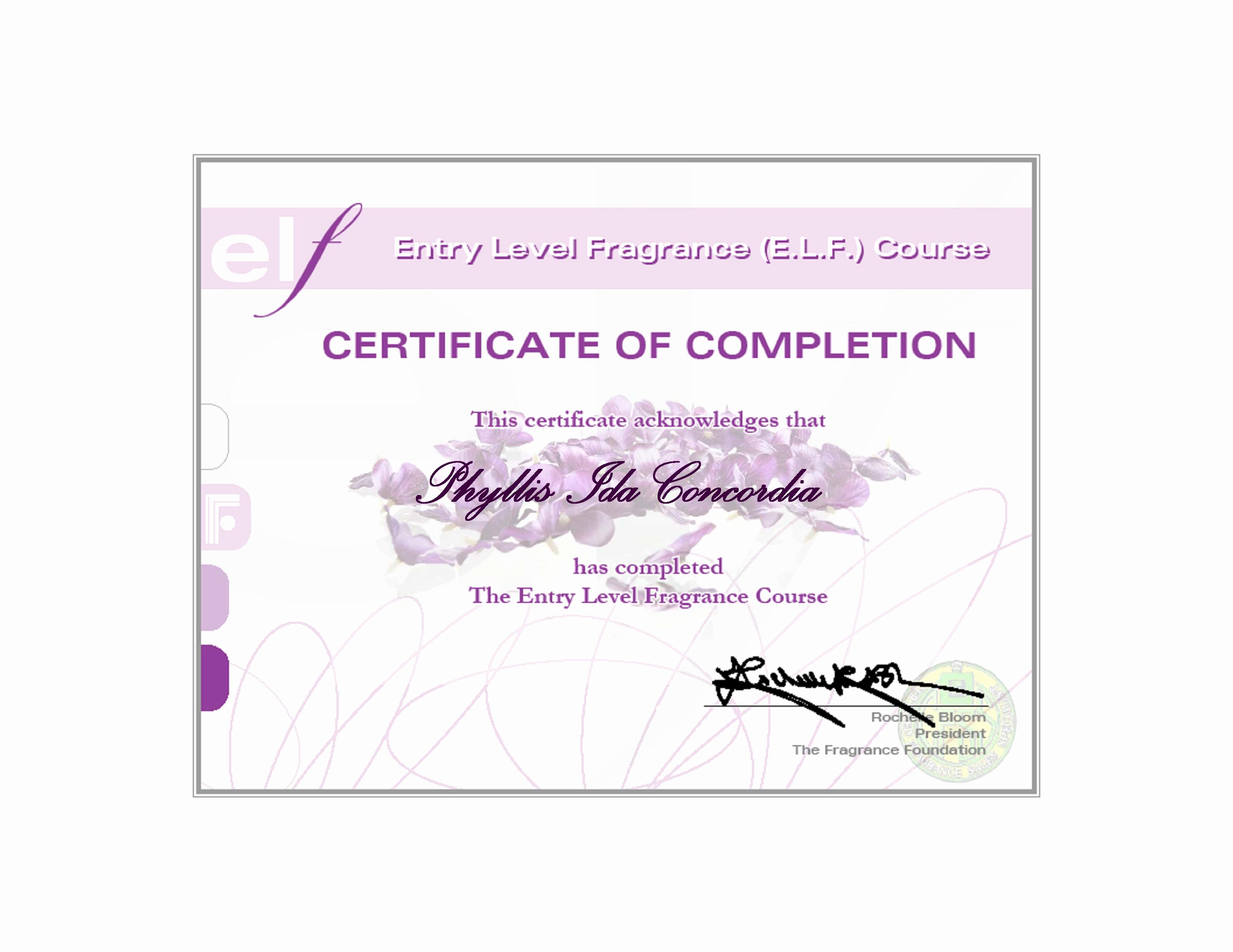 Make A Certificate Of Completion Awesome Beauty Wagon
