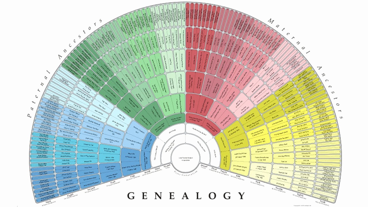 Make A Family Tree Chart Beautiful Create A Free Genealogy Fan Chart with Treeseek