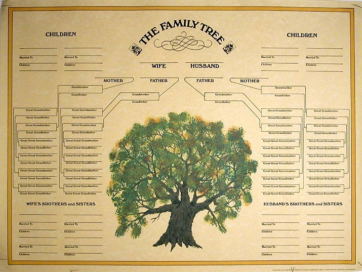Make A Family Tree Chart Beautiful Family Tree Template Blank Family Tree