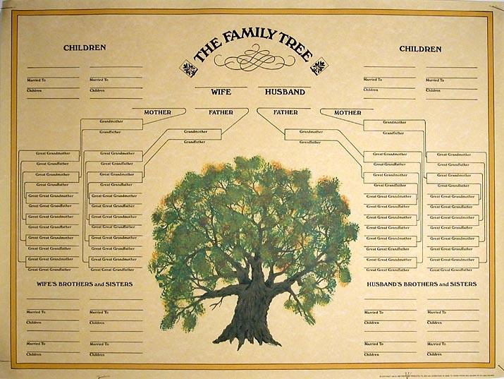 Make A Family Tree Chart Beautiful Family Tree Template Blank Family Tree
