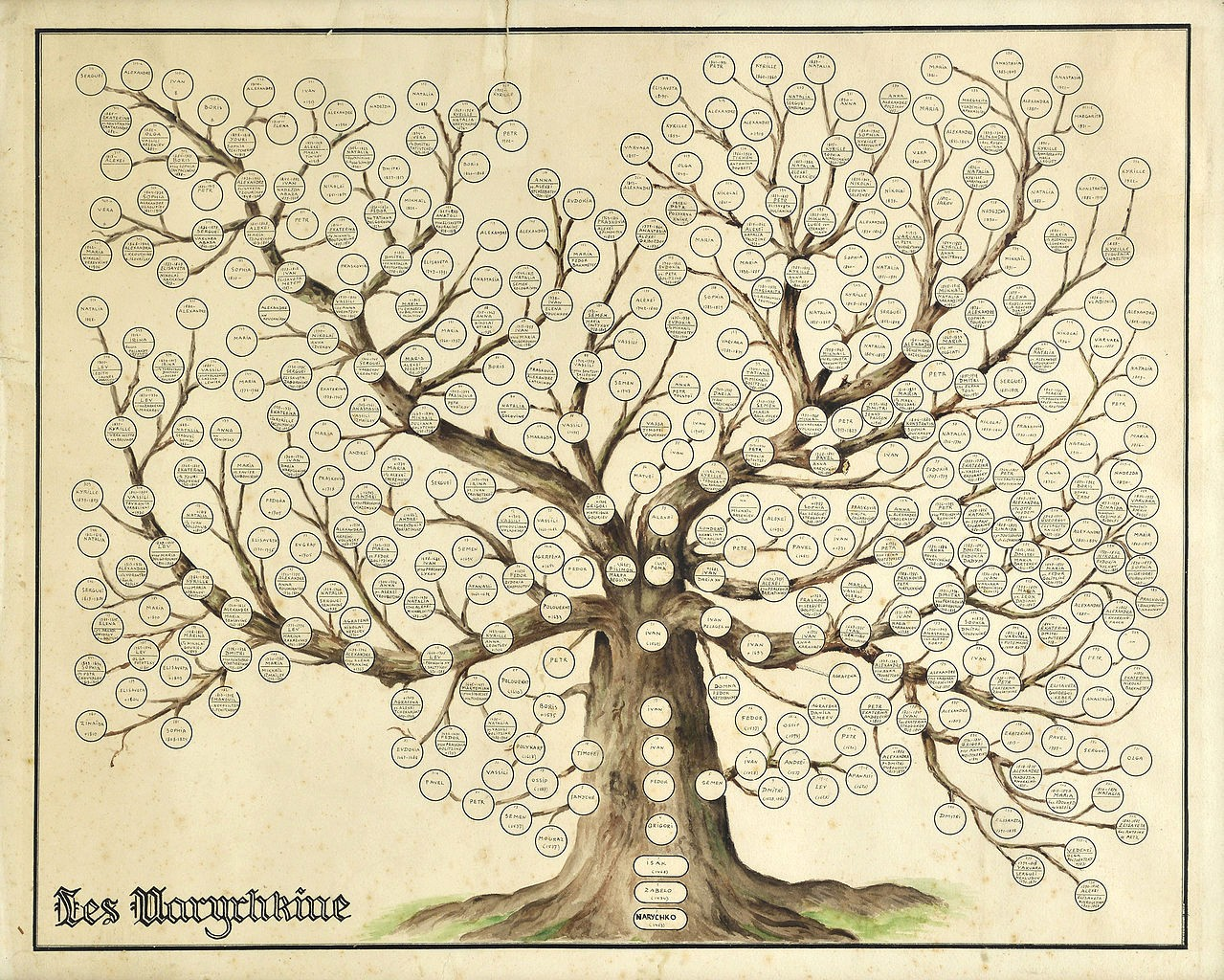 Make A Family Tree Chart Luxury File Naryshkin Family Tree Wikimedia Mons