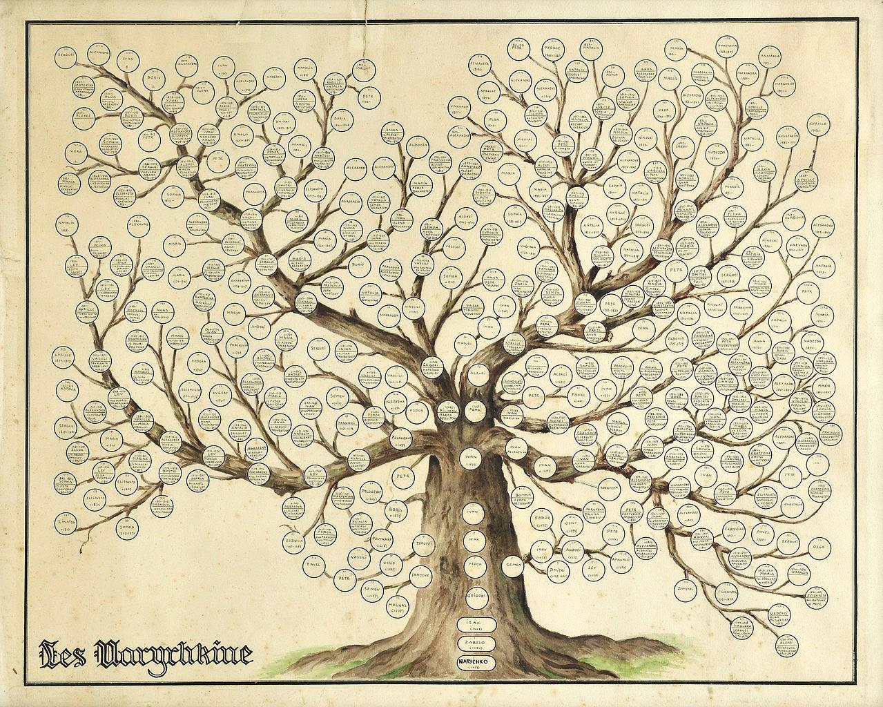 Make A Family Tree Chart Luxury File Naryshkin Family Tree Wikimedia Mons