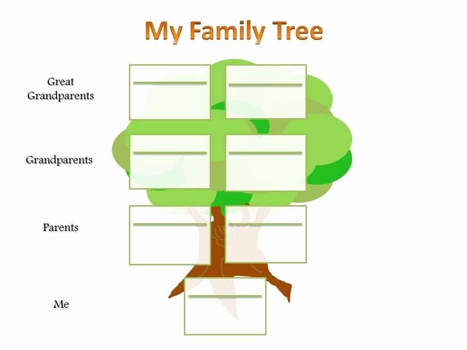 Make A Family Tree Chart Luxury School Project Family Tree Template